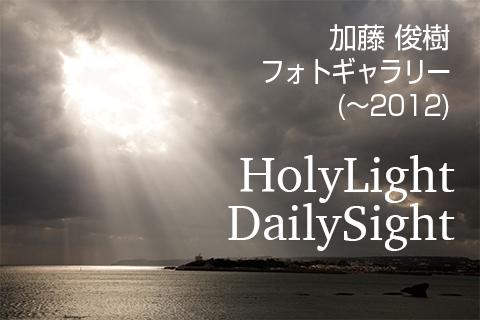加藤俊樹 フォトギャラリー HolyLight DailySight